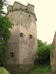 Ancienne forteresse ou ancien château de Largouët - English: Donjon of Largoet