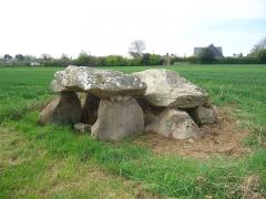 Dolmen à galerie avec les restes de son tumulus - Français:   Dolmen de Kerangré à Erdeven dans le Morbihan