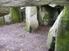 Dolmen de Mané-Groh -  Dolmen (bretonisch Steintisch) Auf aufgerichteten Tragsteinen liegende grosse Steinplatten bezeichnet man als Dolmen -Megalithkultur der Jungsteinzeit(Neolithic) und Bronzezeit 4500 - 2300 v.Chr. - GangGrab von Crucuno - Departement Morbihan - Bretagne