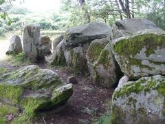 Dolmen de Mané-Groh - Deutsch: Dolmen (bretonisch Steintisch) Auf aufgerichteten Tragsteinen liegende grosse Steinplatten bezeichnet man als Dolmen -Megalithkultur der Jungsteinzeit(Neolithic) und Bronzezeit 4500 - 2300 v.Chr. - GangGrab von Crucuno - Departement Morbihan - Bretagne.