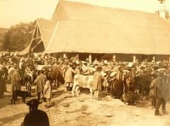 Vieilles halles - Français:   La foire aux vaches du Faouët (photographie de Philippe Tassier, entre 1908 et 1912, Musée du Faouët).