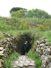 Tumulus avec dolmen du Mamé-er-Hroëk, dit aussi du Ruyk - Deutsch: Tumulus Mane er Hroech, bei Locmariaquer, Morbihan