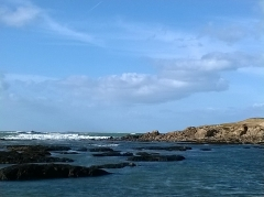 Ile Thinic -  Morbihan Saint-Pierre-Quiberon Portivy Ile Thinic Rochers 03/02/2016