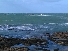 Ile Thinic -  Morbihan Saint-Pierre-Quiberon Portivy Ile Thinic Rochers 03022016