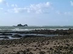 Ile Thinic -  Morbihan Saint-Pierre-Quiberon Portivy Ile Thinic Rochers Cormorans 03/02/2016