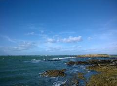 Ile Thinic -  Morbihan Saint-Pierre-Quiberon Portivy Ile Thinic Vue Penthievre 03022016