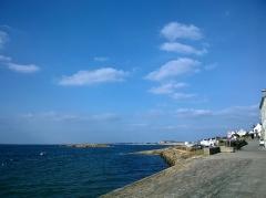 Ile Thinic -  Morbihan Saint-Pierre-Quiberon Portivy Port Ile Thinic 22032016