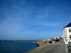 Ile Thinic -  Morbihan Saint-Pierre-Quiberon Portivy Port Ile Thinic 25032016