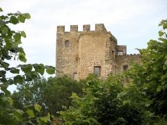Ruines du château fort - Français:   Montaigut-le-Blanc, comm. du Puy-de-Dôme (France, région Auvergne). Château médiéval vu depuis le sud-sud-est.