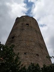 Ruines de la tour du château fort - Français:   Montpeyroux, Puy-de-Dôme (région Auvergne). Vue de la tour depuis le village.