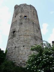 Ruines de la tour du château fort - Français:   Le donjon de Montpeyroux, Puy-de-Dôme, France.