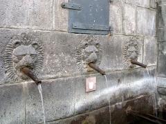 Fontaine des Lions - Français:   Fontaine des petits-gras à Clermont-Ferrand, détail (Puy-de-Dôme, France).