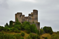Ruines du Château fort - English: Plants gnawing at the walls of the ruins of the Château de Domeyrat in the region Auvergne-Rhône-Alpes, France. Photo was taken on a rainy day.