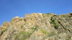 Ruines du château fort - Français:   Détail des fortifications du château de Polignac en février 2012