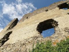 Château d'Artias - Français:   Retournac, dép. de la Haute-Loire, France (Auvergne). Château ruiné d'Artias, perché sur un suc de 706m. d'altitude, situé le long de la Loire à quelques km. en amont (et donc à l'ouest) de Retournac. Vaste pan de muraille vu de l'est.