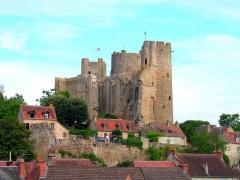 Château - Deutsch: Die Ruine der Burg in Bourbon-l'Archambault, Allier, Frankreich