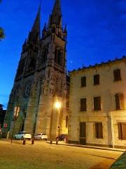 Cathédrale Notre-Dame -  Cathédrale de Moulins (03)
