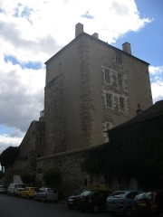 Ancien château ou Palais des ducs de Bourbon -  Moulins