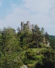 Restes du château fort -  Kasteel van Aleuze
