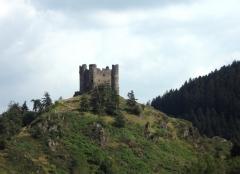Restes du château fort - Français:   Chateau d\'Alleuze (Cantal); photographie personnelle mise dans le domaine public.