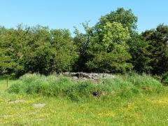Grand dolmen de La Table au Loup ou Table de Maleu - Français:   Le dolmen de la Table au Loup, enfoui dans un tumulus, Sériers, Cantal, France.