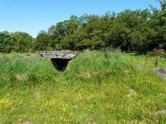Grand dolmen de La Table au Loup ou Table de Maleu - Français:   Enfoui dans un tumulus, le dolmen de la Table au Loup, Sériers, Cantal, France.