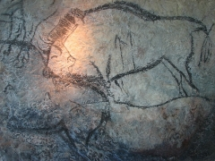 Grotte de la Calbière dite Grotte de Niaux - English: Bisons from the Black Hall (Salon noir) of the Niaux cave, replica in the Brno museum Anthropos. Magdalenian Period of Paleolithic art.