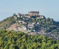 Vestiges du château de Panat et ruines de l'église - English: View of settlement Panat in commune of Clairvaux-d'Aveyron, Aveyron, France