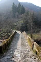 Pont sur le Dourdou, du 14s -  The way of Saint Jacques. More than 1000 km, roughly!.