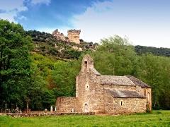 Ancienne église Saint-Martin -  La Cresse (Aveyron) - Église romane Saint-Martin du Pinet (XIIe s.)