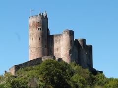 Vestiges du château et sa deuxième enceinte - Château de Najac (Aveyron)