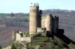 Vestiges du château et sa deuxième enceinte -  Château de cue eric (12)