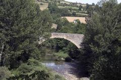 Pont sur la Dourbie -  The medieval bridge seen from the public garden.