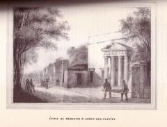 Ancienne école de Médecine - English: 19th century drawings of Toulouse