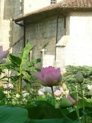 Eglise de Barbotan - Français:   église de Barbotan, Gers, France