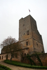 Ensemble des vestiges du château d'Armagnac -  Termes-d'Armagnac (Gers, France). The castle.