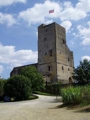 Ensemble des vestiges du château d'Armagnac -  La Tour de Termes d'Armagnac. The tower at Termes d'Armagnac. Near Riscles and Plaisance du Gers (Midi-Pyrénées, France). Built at the end of XIIIe century, it is a Middle-age castle. Only the mighty tower remains intact.