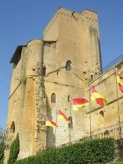 Ensemble des vestiges du château d'Armagnac -  Château de Termes d'Armagnac