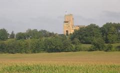 Ensemble des vestiges du château d'Armagnac -  Tour de Termes d'Armagnac (Gers, France)