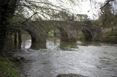 Pont sur le Célé - English:  Bumpback bridge with three piers (free of nozzles downstream side protection, unnecessary).