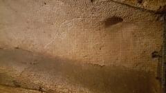 Grotte de Pech-Merle -  Cave Paintings