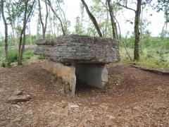 Dolmen de Pech-Lapeyre - Français:   Contrairement à ce que laisserait entendre le nom du fichier, c\'est le dolmen d\'Aurié