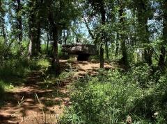 Dolmen de Pech-Lapeyre - Français:   Dolmen d\'Agranel ou du Lac d\'Aurié
