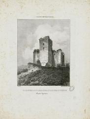 Château et donjon de Gaston Phoebus -