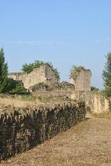 Ruines du château de Pervinquières - English: Ruins of the Castle of Pervinquières, commune of Ginals, Tarn-et-Garonne, France