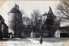 Restes du château de Bois-Sire-Amé - Français:   Vue des ruines du château de Bois-Sire-Amé vers 1900