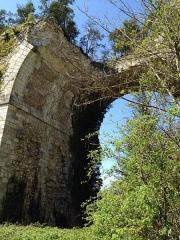 Ancien aqueduc de Pontgouin à Versailles (également sur communes de Maintenon et Berchères-Saint-Germain) - Français:   Vue sur les ruines de l\'aqueduc de Maintenon