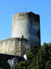 Ensemble castral - Nederlands: De donjon (XIe eeuw) - Tour de César genaamd - van het kasteel van Châtillon-sur-Indre, Indre, Centre, is zowat het belangrijkste overblijfsel van dit versterkte kasteel.