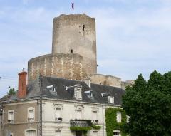 Ensemble castral - Français:   Châtillon-sur-Indre - Donjon du château