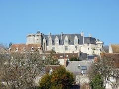 Château - Français:   Château de Palluau sur Indre